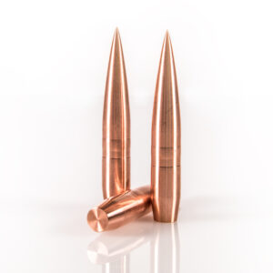 Warner Flat Line .416 550gr Copper Solid Bullet